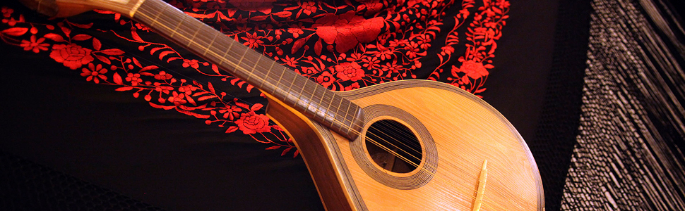A traditional Portuguese Fado guitar